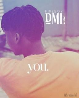 Fireboy DML - You